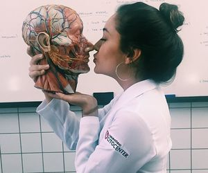 anatomia, anatomy, and college image
