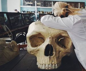 anatomy, med, and medical image