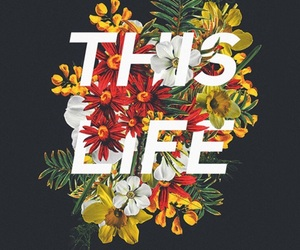 flowers, life, and wallpaper image