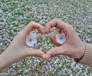 couple, flower, and heart image