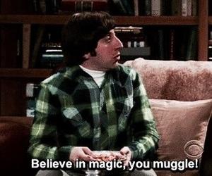 muggle, harry potter, and the big bang theory image