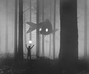 dark, forest, and fish image