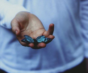 butterfly, hands, and azul image