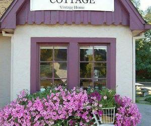 flowers, purple, and cottage image