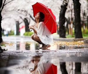 umbrella, red umbrella, and spring image