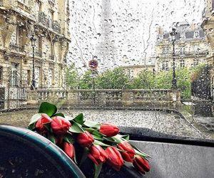 paris, flowers, and rain image