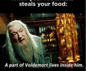 dumbledore, food, and funny image