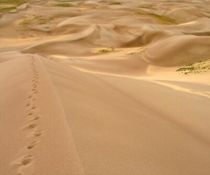 desert, footprints, and dunes image