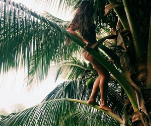 explore, girl, and palmtree image