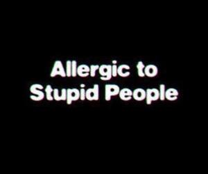 people, stupid, and allergic image