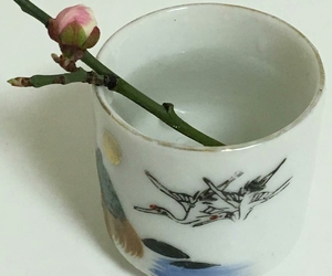 ceramics, cup, and flower image