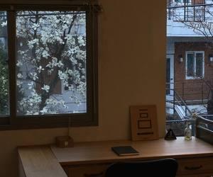 desk, sakura, and study image