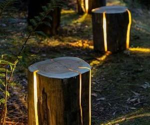 light and wood image