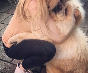 chow chow, cuddle, and girl image