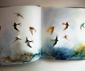 birds, color, and Paper image