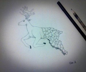 draw geometry cerf image