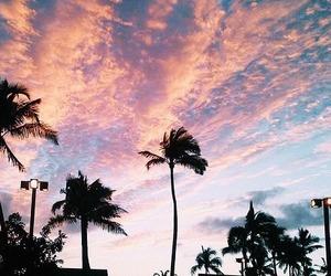 ca, cali, and paradise image