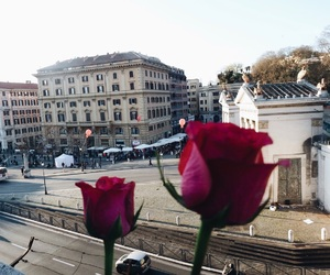 city, flowers, and italy image