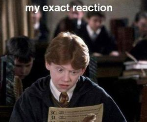 harry potter, test, and funny image