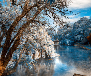 nature, landscape, and blue image