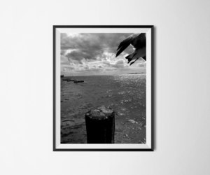 art print, birds, and black and white image