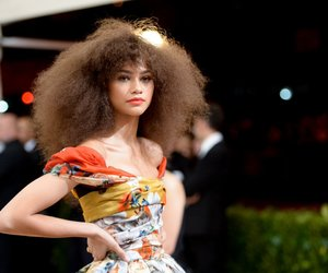 met gala and zendaya image