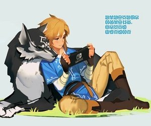 link and video games image