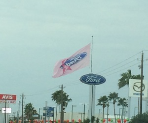 ford, girly, and pink image