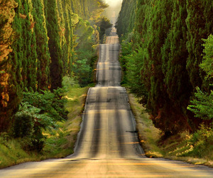 italy, road, and nature image