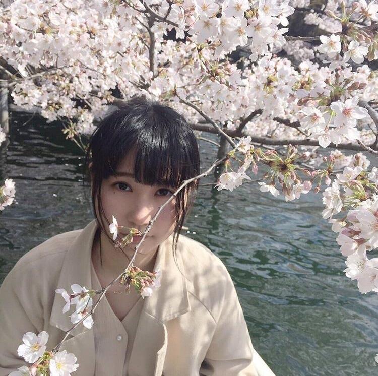beautiful, chihiro, and flower image