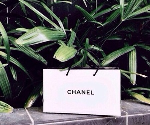 chanel, green, and darkgreen image