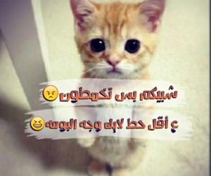 Image by عسولة 😍🍯
