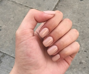 gel, manicure, and nails image