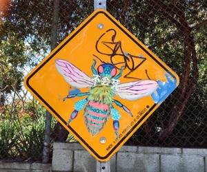 california, la, and sign image