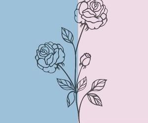 header, blue, and pink image