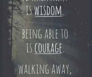 quotes, courage, and wisdom image