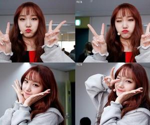k-pop, roa, and pledis girlz image