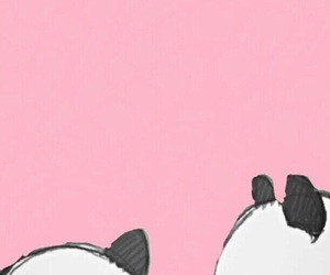 panda, wallpaper, and pink image