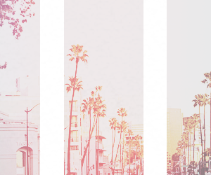 header, california, and twitter image