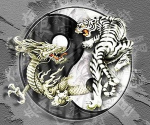 chinese art, dragon, and tiger image