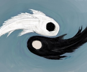 koi fish and yin yang image