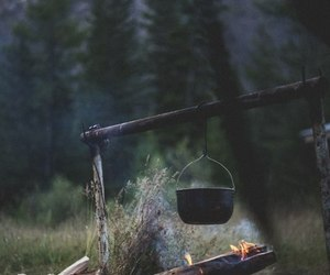 nature and fire image