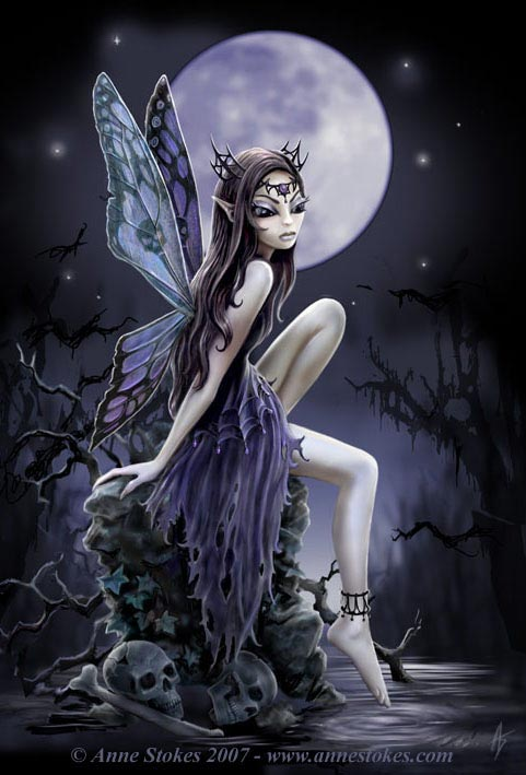 dark, fairy, and moon image