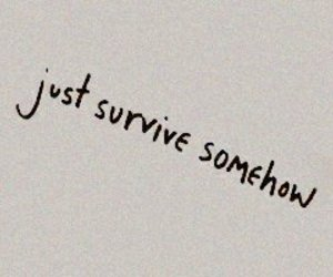 aesthetic, quotes, and survive image