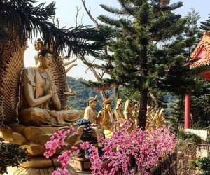 architecture, Buddha, and buddhism image