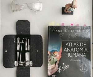 anatomy, study, and medicine image