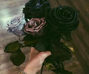 mashallah, wunderschön, and schwarze rossen image
