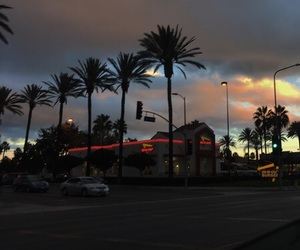 aesthetic, palms, and sky image