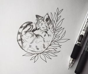 cat, beautiful, and drawing image