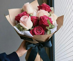 pink rose, red rose, and roses image